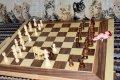 Animal Chess 2.jpg