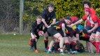 Rugby2_TP_1.jpg