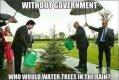 watering-trees.jpg