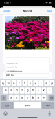 Simulator Screen Shot - iPhone 11 Pro Max - 2020-03-08 at 15.20.59.png