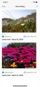 Simulator Screen Shot - iPhone 11 Pro Max - 2020-03-08 at 15.23.21.jpg