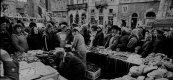 Market Lviv.jpg