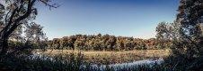 Culzean Castle - Pond.jpg