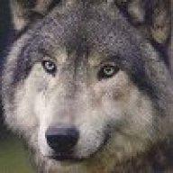 Ryewolf