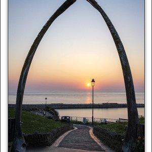 whalebones sunrise.jpg
