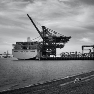 Felixstowe International Port